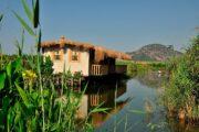 dalyan kingfisher restaurant - uzumlu - camianda - morchella esculent - gocek lotis restaurant - best dalyan tour ever - 8