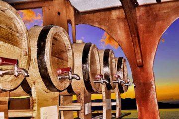 Volkan's Adventures Dalyan - evening Wine Tasting Boat Trip - 9