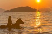 Volkan's Adventures Dalyan - Swimming With Horses - 30