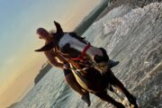Volkan's Adventures Dalyan - Swimming With Horses - 31