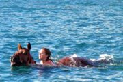 Volkan's Adventures Dalyan - Swimming With Horses - 72